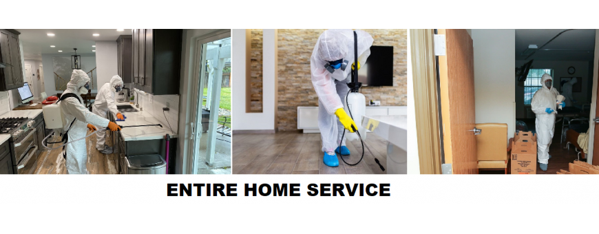 ENTIRE HOME DISINFECTION
